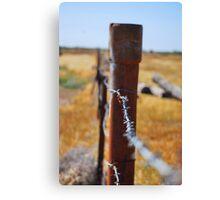 Rusted desert Canvas Print