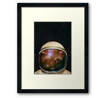 Star Fox Framed Print