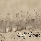 Sandbank of Gulf Shores by sacredmoments