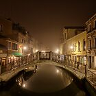 Winter mist in Venice by Jai Honeybrook