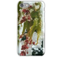 Winter Wonder Phone Case iPhone Case/Skin