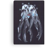 Illustrations 25 Canvas Print
