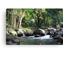 Korrumbyn Creek NSW Canvas Print