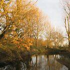 Autumn Reflection by KatDoodling