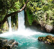 Hermon Stream Nature reserve (Banias) Golan Heights Israel by PhotoStock-Isra