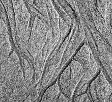 Sand Art  by Nina  Matthews Photography
