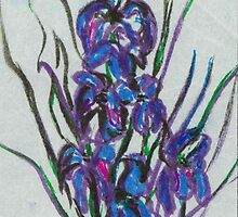 Blue Flag Iris by circa24