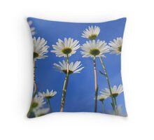 Summer Daisies Throw Pillow