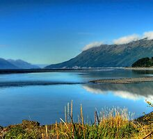 Cook Inlet by Dyle Warren