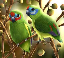 Double-eyed fig parrots by lilyart
