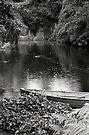 Pond—Government House Tasmania by BRogers