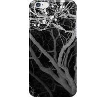 Berry Case 2  iPhone Case/Skin