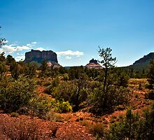 Sedona Heat of the Day by Lee Craig