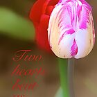 Two Hearts by Cee Neuner