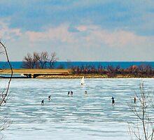 Niagara - Hockey LIves by Marilyn Cornwell