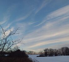 Winter - Evening Sky, Great Meadow by JimLeggeArt
