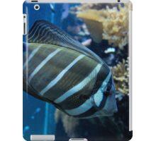 Fish iPad Case/Skin