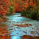*Blue River* by DeeZ (D L Honeycutt)