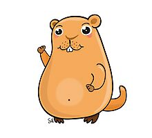 GroundHog Kawaii Photographic Print