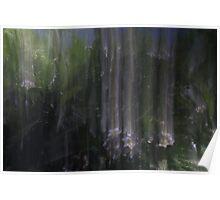 Frangipani raining. Poster