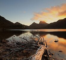 A Summers Evening at Cradle Mountain by tinnieopener