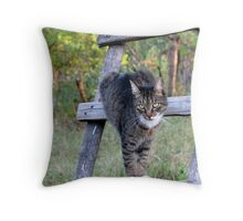 Is This How You Want Me for the Photo ? Throw Pillow