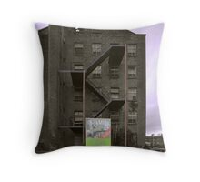 Desirable Property (2) Congleton Throw Pillow