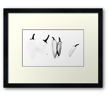 THEY DON'T LOOK LIKE PEPPERS!!! Food in B&W  Framed Print