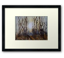 The Clearing in the Mist Framed Print