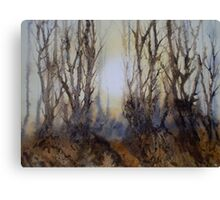 The Clearing in the Mist Canvas Print