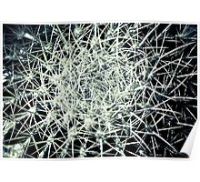 EXPLOSION IN GREY!!! Flowers Poster
