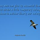 Liberty And Safety by artisandelimage