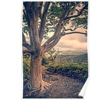 Waihee Ridge Trail Maui Hawaii Poster