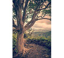 Waihee Ridge Trail Maui Hawaii Photographic Print