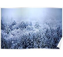 Foggy and snowy Black Forest Poster