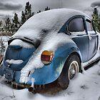 Cold bug by GWGantt