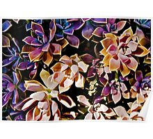 COLOURFUL COMPOSITIONS OF FLOWERS!!! Flowers Poster
