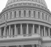 United States Capitol Building by Frank Romeo