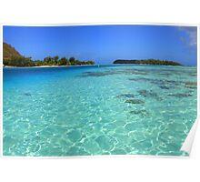 Moorea Island Coral Reef Poster