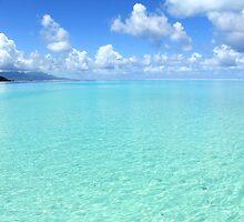 Tahaa Coral Reef View by Honor Kyne