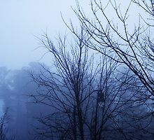 Dark Trees, Cold Fog by Luke Kegley