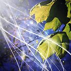 Leaves Dancing in the Magic of Night by Leah Gunther