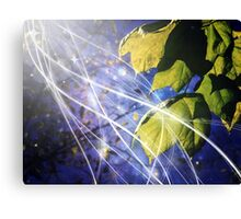 Leaves Dancing in the Magic of Night Canvas Print