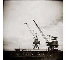 { dancing cranes } Photographic Print
