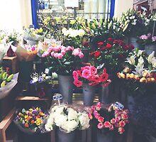 oxford flowers by cocosuspenders