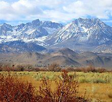 Scenic Sierras by marilyn diaz