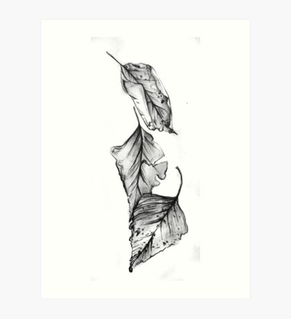 Study of decaying autumn leaves Art Print