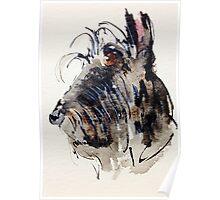 Scottie Dog Poster
