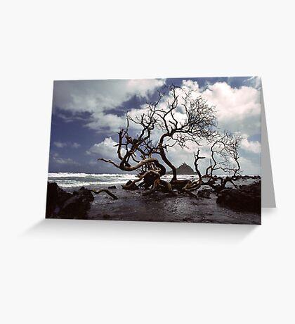 Hana Coast Greeting Card