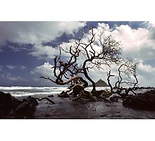Hana Coast Photographic Print